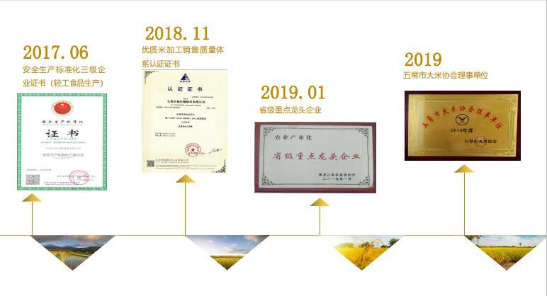 发展历程2.jpg